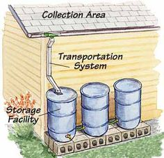 How to Harvest Rainwater.  Detailed instructions for making a rain barrel and connecting several for a larger water storage capacity.