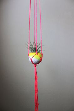Neon Pink Macrame Air Plant Hanging Planter  by ThriftedandMadeAus, $32.00
