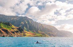 HAWAI'I Magazine's 2021 Photo Contest Winners - Hawaii Magazine My Magazine, Photo Contest, Hawaii, Mountains, Nature, Travel, Pageant Photography, Naturaleza, Viajes