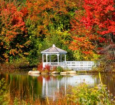 gazebo on pond with brilliant fall colors