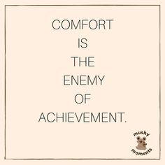 COMFORT IS THE ENEMY OF ACHIEVEMENT. #quotes #wordsofwisdom #quoteoftheday