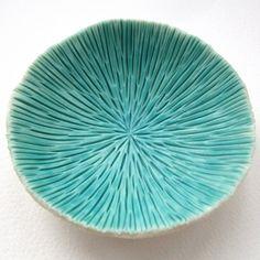 c-urchin by Lisa Stevens