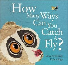 How Many Ways Can You Catch a Fly?, Steve Jenkins & Robin Page  #OnlineShopping  #KidsBooks  #ChildrensBooks