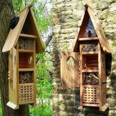 la cabane d'observation d'insectes.
