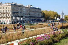 Bordeaux centre, les quais fleuries