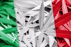 Włochy o krok od legalizacji medycznej marihuany