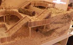 Caring Guide for Baby Hamsters Dwarf Hamster Cages, Hamster Diy Cage, Diy Hamster Toys, Gerbil Toys, Gerbil Cages, Hamster Habitat, Hamster Care, Syrian Hamster, Pets