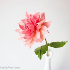 Paper Dahlia, handmade by petalsfrompaper@gmail.com