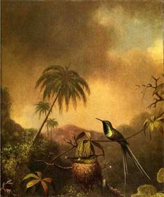 Hummingbirds by Martin Johnson Heade - 1870
