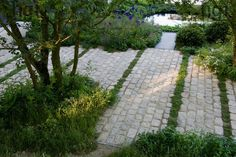 Harpur Garden Images Ltd :: Marcus Harpur No Man's Land: ABF The Soldiers' Charity Garden to mark the Centenary of World War One. View from atop a mound stone sett flooring and pool beyond. Gold medal. Design: Charlotte Rowe Sponsor: Bechtel Coutts and Co.
