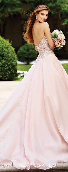 Wedding Dress by David Tutera for Mon Cheri 2017 Bridal Collection   Style No. » 117266 Adelina