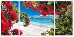 Image / picture options — Printed 'images on glass' kitchen splashbacks and glass wall art by Lucy G Glass Wall Art, Canvas Wall Art, Wall Art Prints, Nz Art, Panoramic Images, Landscape Art, Art Photography, Abstract, Pictures