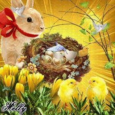 Easter Holidays, Christmas Holidays, Easter Bunny, Easter Eggs, Happy Easter Gif, Ostern Wallpaper, Holiday Gif, Amazing Gifs, Baby Chickens