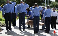 So insanely poignant <3  World Trade Center rescue dog Bretagne is given salute by firemen from Cy-Fair Volunteer Fire Department as she is on her way to the vet to be put to sleep after a long life (16 years!).  A true little hero<3  - Photo by Karen Warren