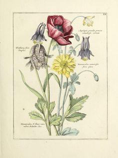 Nederlandsch bloemwerk