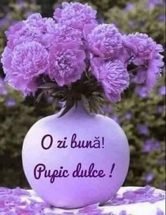 Cute Gif, Shades Of Purple, Good Advice, Good Morning, Cool Pictures, Christmas Bulbs, Holiday Decor, Flowers, Beautiful