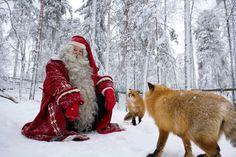 A Finnish Christmas at Gulo Gulo | Holiday Village Gulo Gulo | Holiday packages