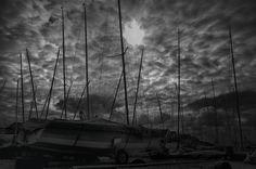 Photographer - Darren Stone