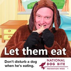 Let them eat. Don't disturb a dog when he's eating. Dont Disturb, Dog Food Online, Cheap Dog Food, Dog Safety, Therapy Dogs, Taxi Driver, Animals For Kids, Dog Training, Dog Food Recipes