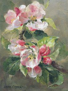 anne cotterill original paintings - Google'da Ara