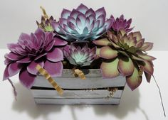 Lynn's Locker: Stampin' Up Oh So Succulent Crate