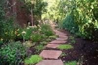 dog friendly landscaping - Google Search