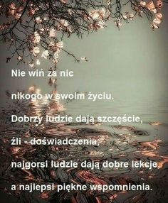 Motto, Humor, Words, Quotes, Handsome Quotes, Polish Sayings, Quotations, Humour, Funny Photos