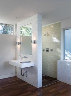 Walk In Showers Bath Design Ideas, Pictures, Remodel And Decor