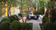 Contemporary classic courtyard nestled in & around Buxus balls & small trees