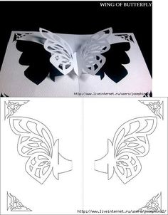paper cutting patterns butterfly butterfly paper cut out art and