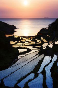 Shelved rice terrace in Japan. It is in the southern Kyushu region, Saga prefecture, Genkai town. Photo by Jason Arney.