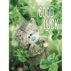 Good Luck Me to You Bear Card  Tatty ted