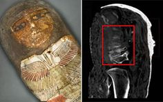 Two of the mummies housed in theVatican Museum have been discovered as fakes. The bone in one of them was actually from medieval times. Spokesperson Alessia Amenta, Egyptologist and curator of the Vatican Museum. Testament, Ancient Mysteries, Vatican, Archaeology, Medieval Times, Alternative News, Child, Antiquities, Animal