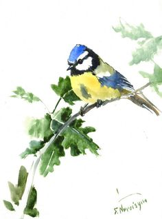 Blue Tit Original watercolor painting 12 X 9 in by ORIGINALONLY
