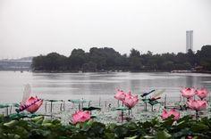Nanchino, la capitale triste   Latitudeslife