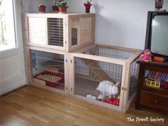 Clapier d'intérieur pour lapin - 5 {JPEG}