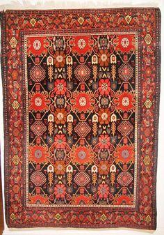 Senneh Kurd - Tschebull Antique Carpets
