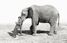 Bartosz Opania/Twoj Styl Elephant, Animals, Animales, Animaux, Elephants, Animal, Animais