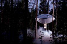 Отель на дереве « FotoRelax