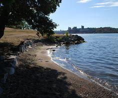 "Slottsträdgårdsmästaren - oh look...there's a silver necklace lining the beach. ""and she wore bluue velllvet"