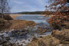 Brdy | Padrťské rybníky Jezera, Water, Outdoor, Gripe Water, Outdoors, Outdoor Games, The Great Outdoors
