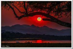 Sunset on the Zambezi River. Zimbabwe looking towards Zambia