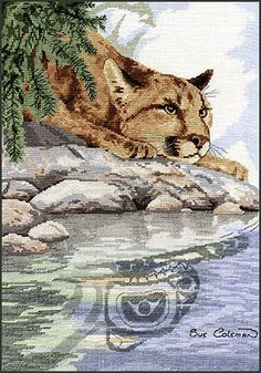 """""""Cougar Reflection"""" is the title of this cross stitch pattern designed by Sue Coleman from The Stitching Studio."""