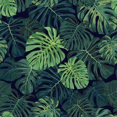 Tapeta Peel&Stick, tropikalny wzór, monstera - wallcolors - Tapety