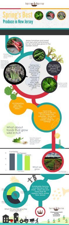 Spring produce in New Jersey #food #infogrhttp://gamatqnc.com/obat-pembesaran-limpa/aphic