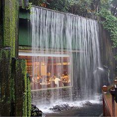 Chi Lin Restaurant #architecture #architect #architectureporn #architecturelovers #designer #design #comment #creative #building #nice #nature #restaurant