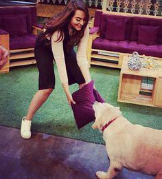 Tug of war with Zanju on #TheKapilSharmaShow! #akira #akirapromotions #shootshennanigans #dogsofinstagram #doggylove