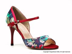 Dream tango shoes