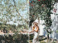#beauty #masseria #apulialover #puglia #wedding #weddingday #weddingdress #worldwedding #luxurywedding #destinationwedding #discoverpuglia #countrywedding #masseriatorrecoccaro