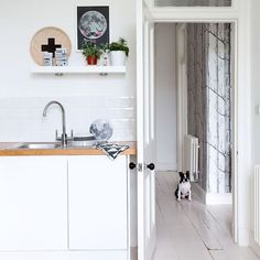 Our kitchen plus wallpaper glimpse Kitchen doorway | Victorian tenement flat | House tour | PHOTO GALLERY | Ideal Home | Housetohome.co.uk